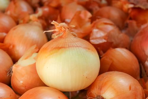 まんこから玉ねぎの臭いがする時の原因と対策方法